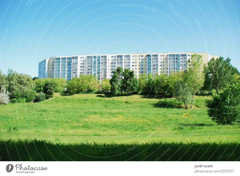 Triangulum Australis Cloudless sky Beautiful weather Warmth Tree Meadow Marzahn Outskirts Deserted Architecture Prefab construction