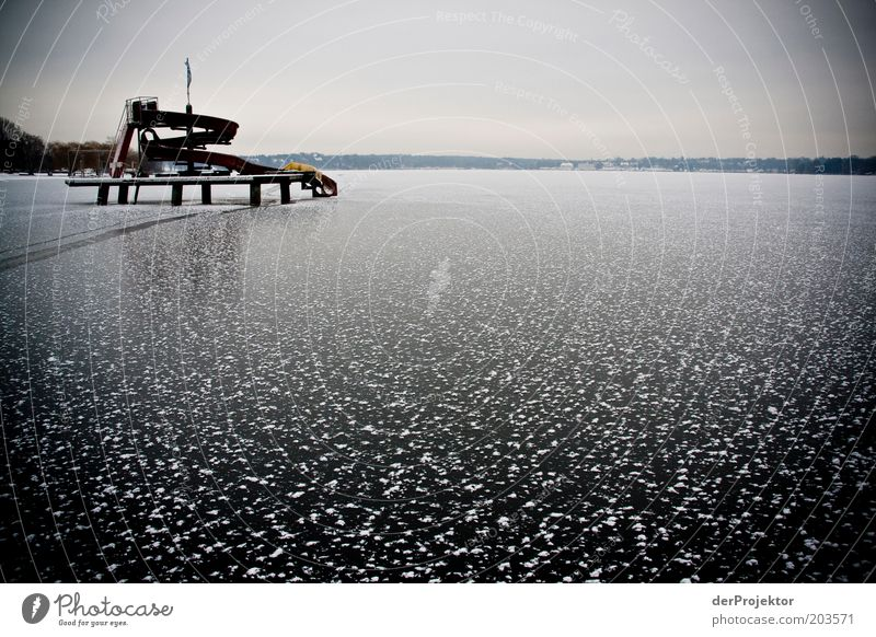 Winter Black Cold Berlin Lake Landscape Ice Environment Frozen Beautiful weather Wannsee