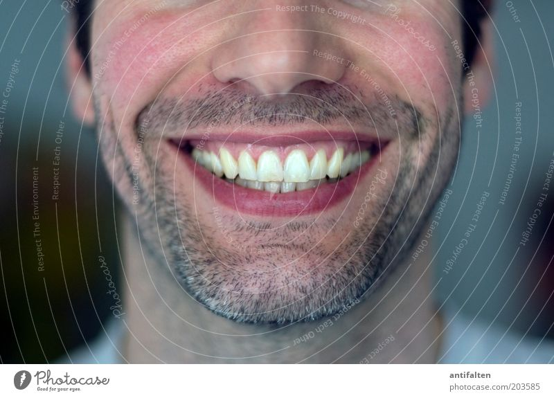 jet man Human being Masculine Man Adults Head Face Nose Mouth Lips Teeth Facial hair 1 30 - 45 years Black-haired Brunette Designer stubble Smiling Laughter