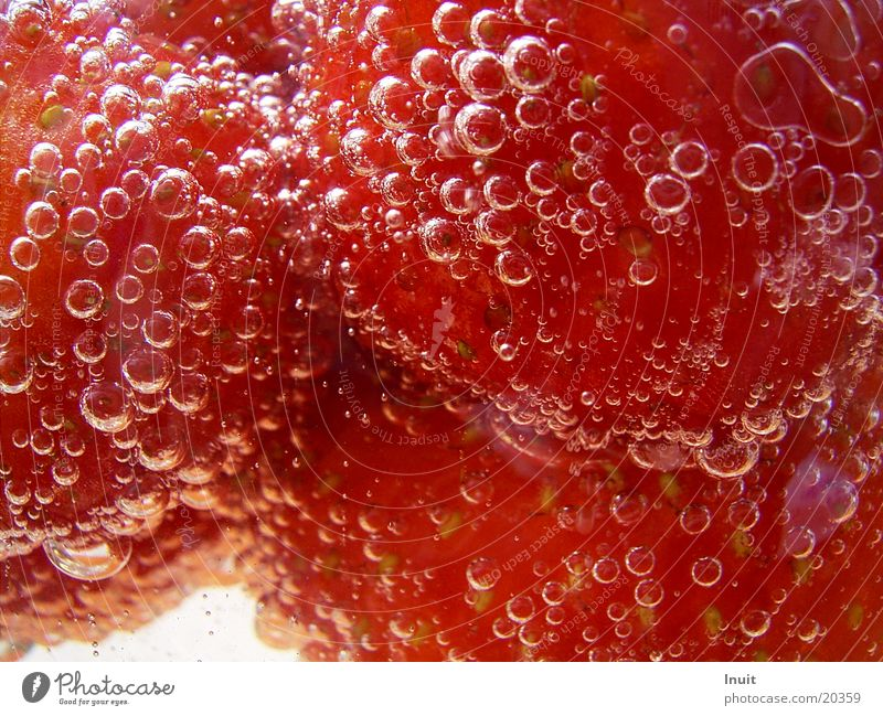 Strawberries 03 Sparkling wine Prosecco Champagne bubbles Alcoholic drinks Strawberry Close-up