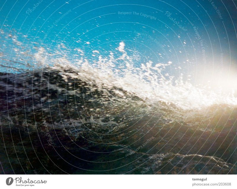 coarse wash cycle Ocean Waves Water Threat Gigantic Tall Cold Wild Blue White Fear Movement Nature Colour photo Exterior shot Lomography Deserted Copy Space top
