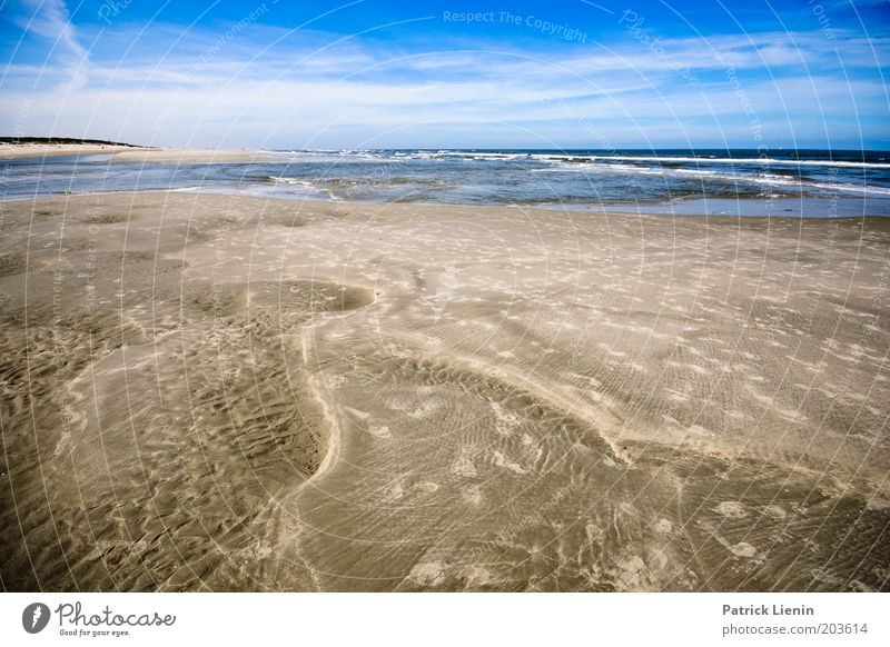 savour Environment Nature Sand Water Sky Clouds Summer Climate Beautiful weather Wind Waves Coast Beach North Sea Ocean Island Spiekeroog Pattern Tracks Horizon