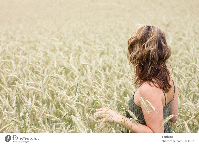 cornfield Woman Human being Cornfield Stand Loneliness Wheat Field Dreamily Nature Touch Life Thin Copy Space left Agriculture Grain Rear view Summer