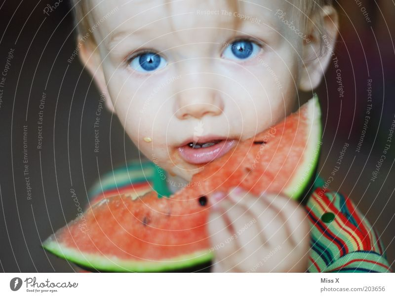 Child Blue Eyes Nutrition Food Boy (child) Eating Healthy Infancy Fruit Fresh Sweet Portrait photograph Toddler Appetite Juicy