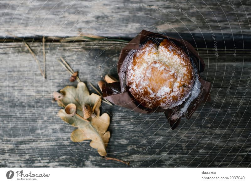 autumn muffin Vacation & Travel Plant Leaf Joy Life Lifestyle Style Playing Food Freedom Feasts & Celebrations Moody Design Wild Leisure and hobbies