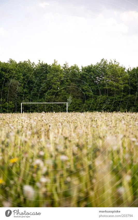 orphaned soccer field Leisure and hobbies Summer Soccer Soccer Goal Meadow Meadow flower Sporting Complex Football pitch Deserted Copy Space top Exterior shot