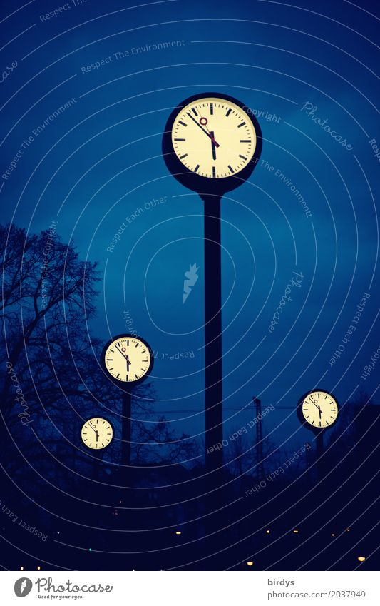 watch comparison Clock Art Night sky Tree Duesseldorf Deserted Tourist Attraction Clock hand Watch syncronization Digits and numbers Illuminate Exceptional Tall