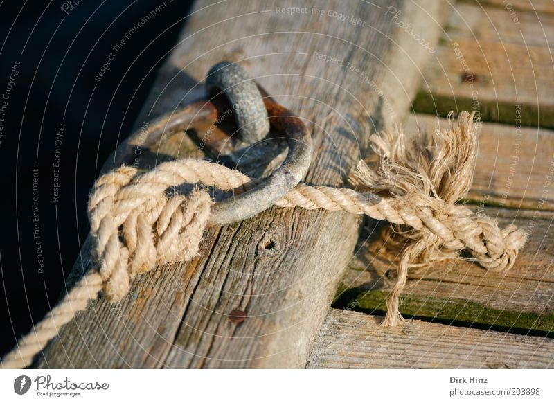 Wood Brown Circle Rope Safety To hold on Harbour Trust Firm Navigation Footbridge Testing & Control Hang Advice Rescue Hold