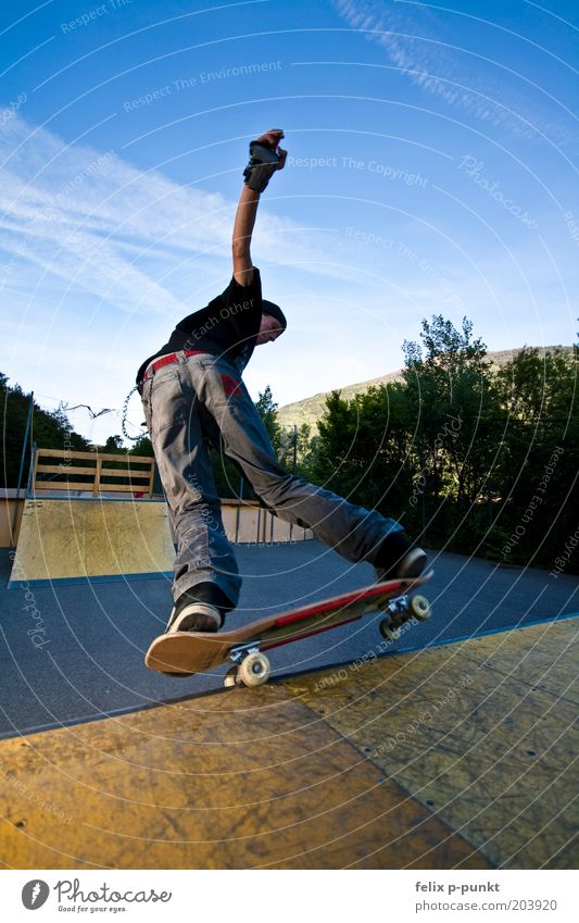 Youth (Young adults) Body Art Masculine Driving Trust Skateboarding Brave Rotate Punk Freestyle Balance Halfpipe Wide angle Amusement Park
