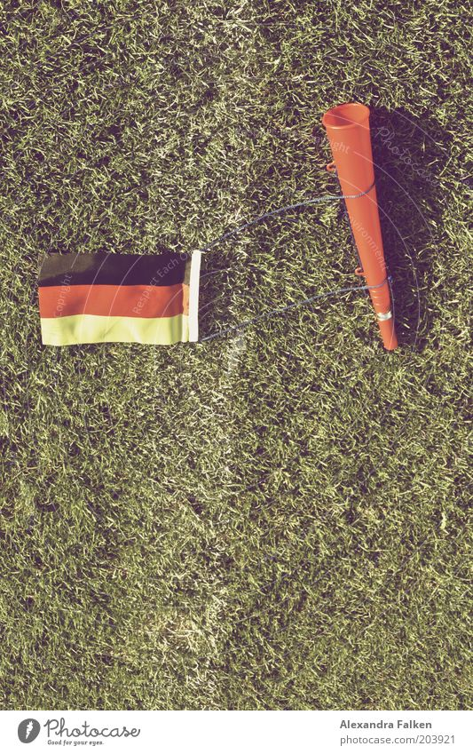 Green Sports Germany Signs and labeling Soccer Ball Lawn Flag German Flag Grass surface Football pitch Martial arts Crash World Cup Ball sports Europe