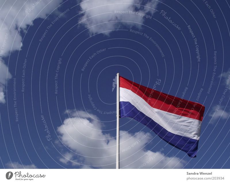 WM opponent? Flag Air Weather Beautiful weather Wind Blue Red White Netherlands Colour photo Multicoloured Exterior shot Detail Deserted Copy Space left Day