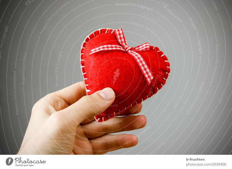 felt heart Man Adults Hand Fingers 30 - 45 years Kitsch Odds and ends Love Red Sympathy Friendship Desire Heart Felt Donate Give Cloth Loneliness Infatuation