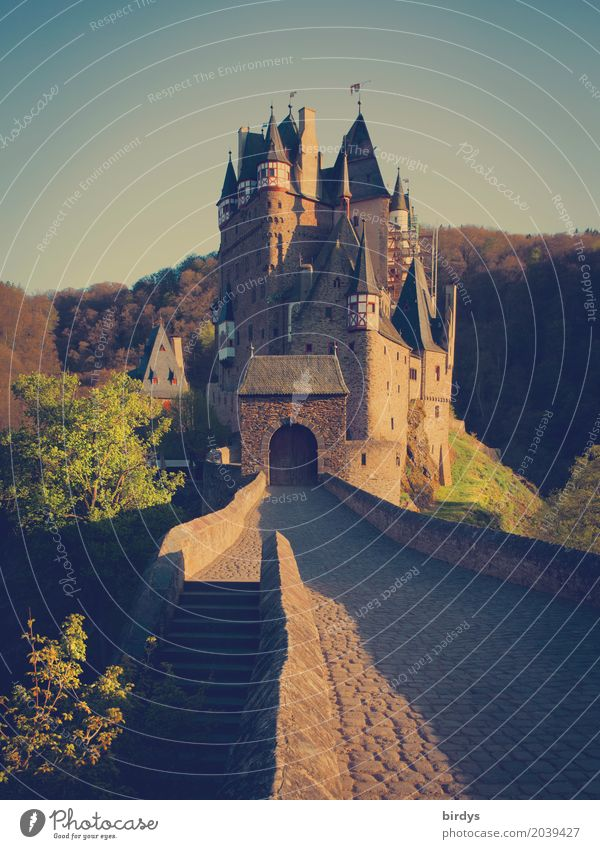 somewhere eltz Vacation & Travel Tourism Summer vacation Nature Cloudless sky Spring Forest Mountain Hunsrück Deserted Castle Tourist Attraction Esthetic