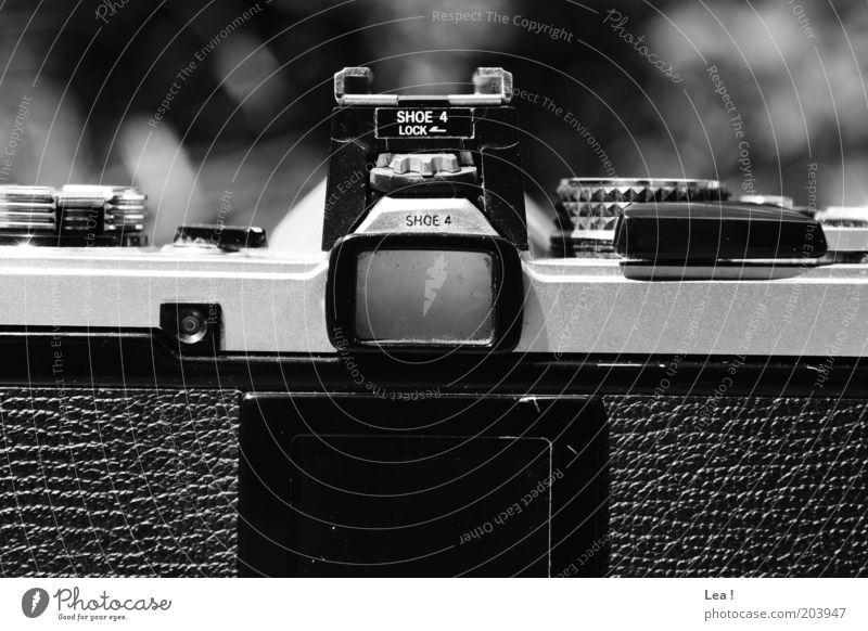 Old Retro Camera Analog Passion Take a photo Viewfinder Black & white photo