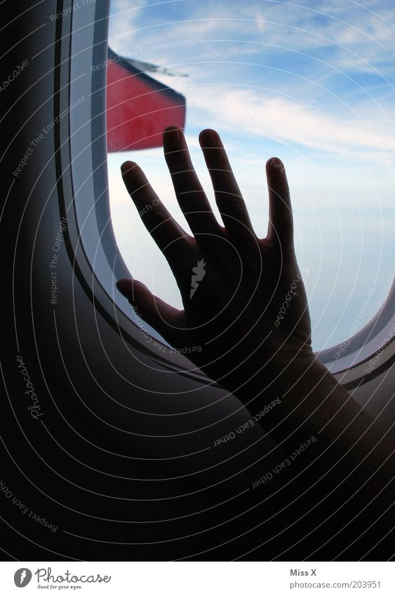 Hand Sky Vacation & Travel Far-off places Fear Flying Aviation Longing Wanderlust Homesickness Human being Fear of flying View from a window In the plane