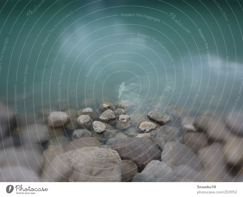stones Nature Landscape Water Lakeside Stone Relaxation Wet Emotions Moody Power Calm Colour photo Exterior shot Close-up Deserted Blur Stony