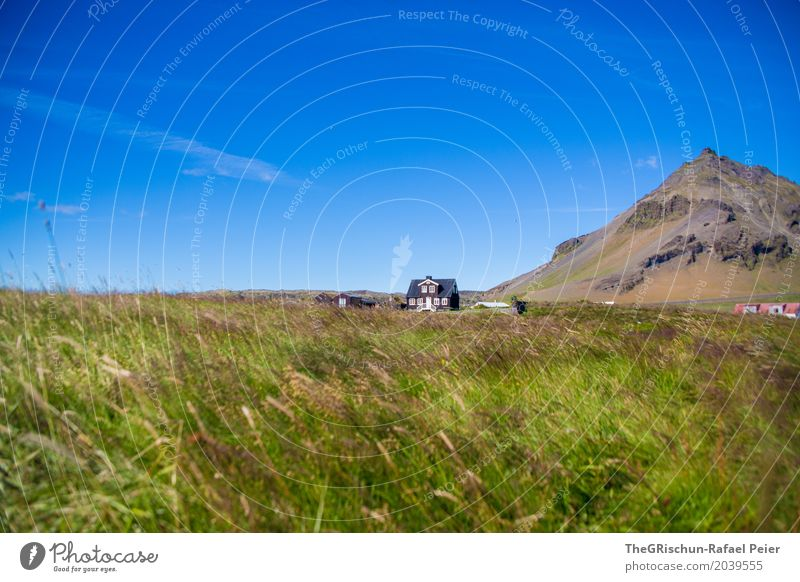 House on the mountain Environment Nature Landscape Blue Green Mountain Iceland Travel photography House (Residential Structure) Meadow Sky Cloudless sky