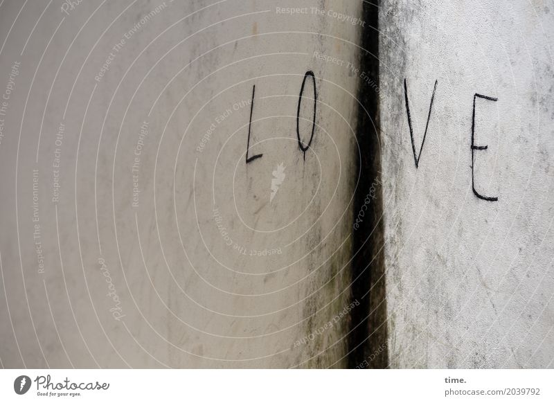 Life elixir in every corner. Wall (barrier) Wall (building) Corner Sign Characters Graffiti Trashy Safety Protection Together Love Infatuation Romance Design