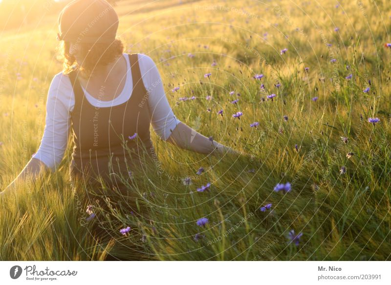 Woman Nature Plant Summer Feminine Freedom Landscape Style Happy Warmth Dream Moody Adults Weather Contentment Field