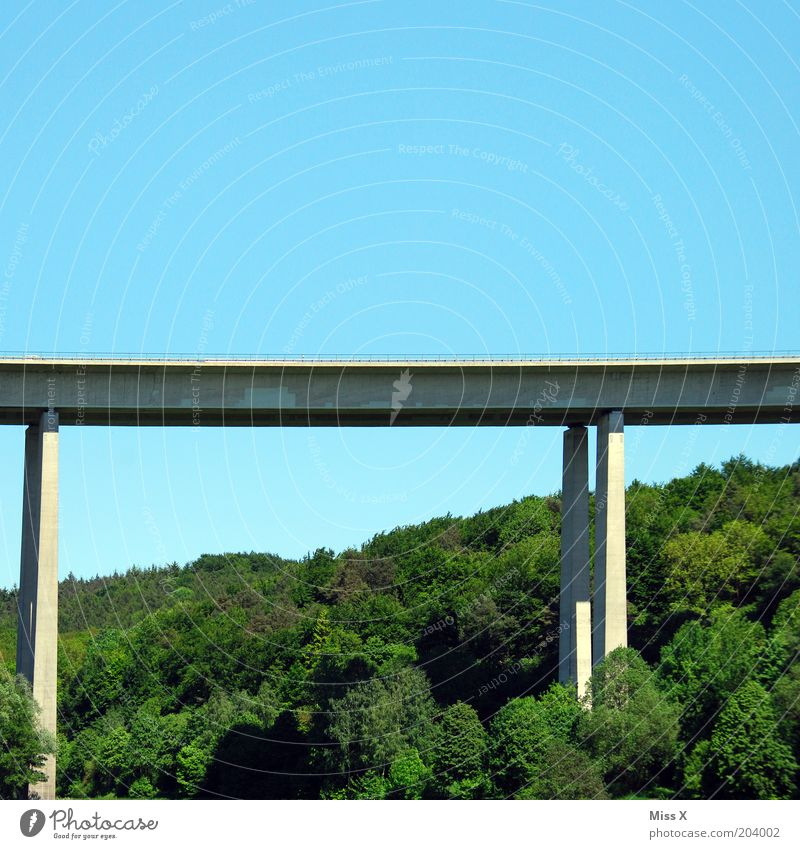 bridge Nature Landscape Forest Bridge Transport Traffic infrastructure Street Environment Highway Colour photo Exterior shot Copy Space top Pylon Overpass