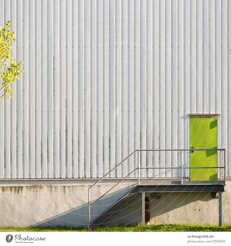 Green Wall (building) Wall (barrier) Line Metal Door Concrete Facade Stairs Gloomy Stripe Warehouse Structures and shapes Banister Industrial plant Storage