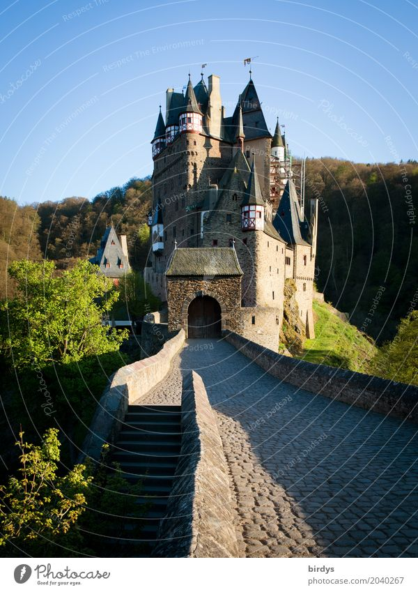 somewhere eltz 2 Vacation & Travel Tourism Sightseeing Landscape Cloudless sky Spring Tree Forest Mountain Castle Architecture Tourist Attraction