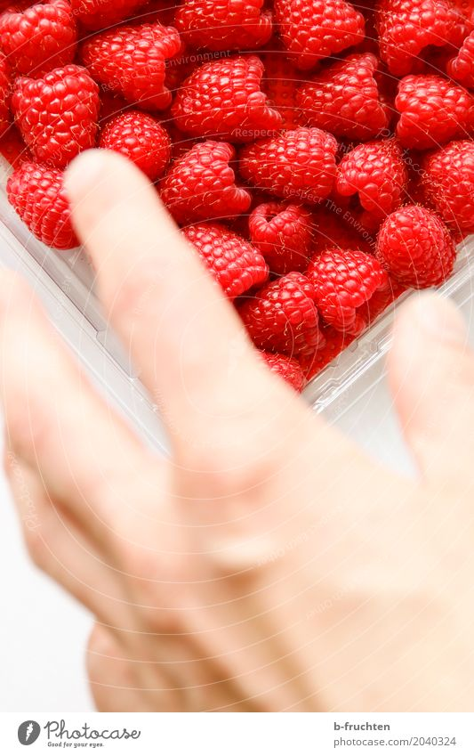 Grab it! Fruit Man Adults Hand Fingers 30 - 45 years Shopping Eating Fresh Healthy Red Raspberry Fruity Mature Blister Candy Grasp Colour photo Interior shot