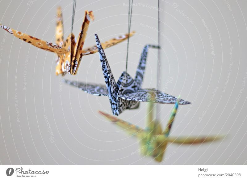 peace sign Animal Crane 3 Paper String Sign Flying Hang Esthetic Exceptional Beautiful Uniqueness Blue Brown Green Loyal Peace Healthy Contentment Creativity