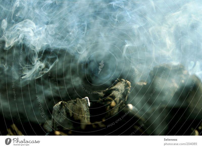 Fire Smoke Ignite Charcoal (cooking) Charcoal