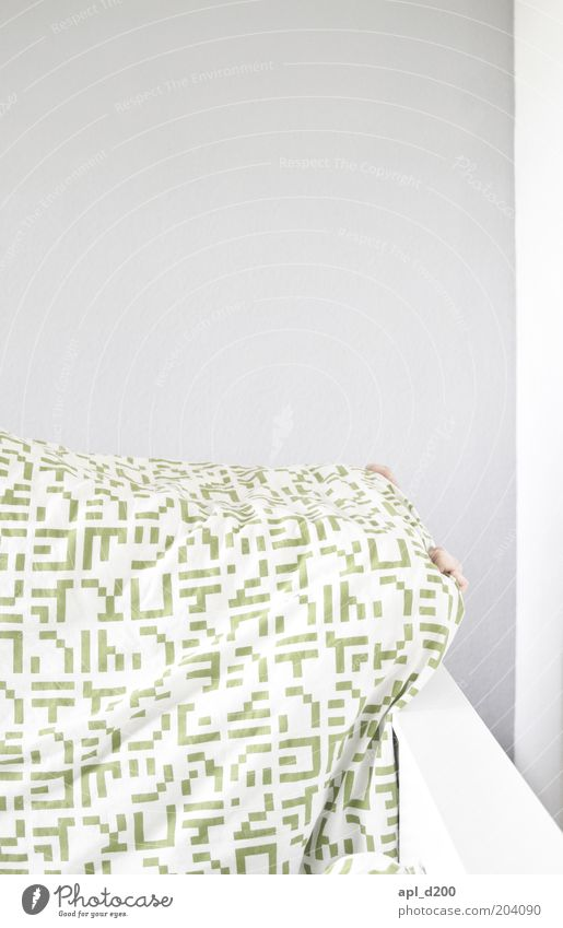 egg hunt Sleep Hide Living or residing Hand Fingers 1 Human being Gray Green White Shame Relaxation Bed Duvet Wall (building) Colour photo Subdued colour