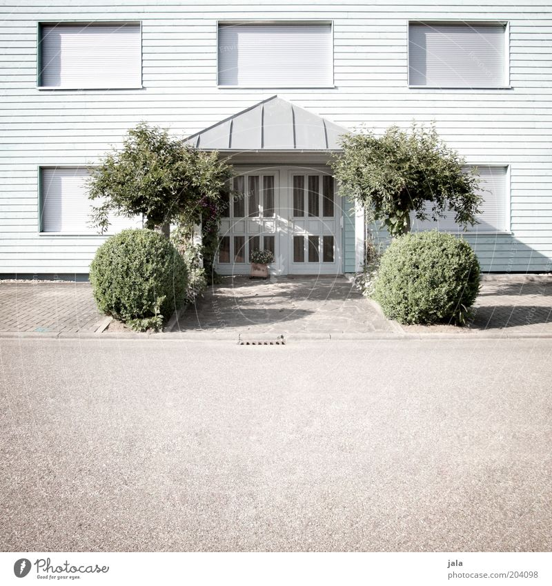 synchronous greening Plant Tree Bushes Foliage plant House (Residential Structure) Building Facade Window Door Street Esthetic Clean Colour photo Exterior shot