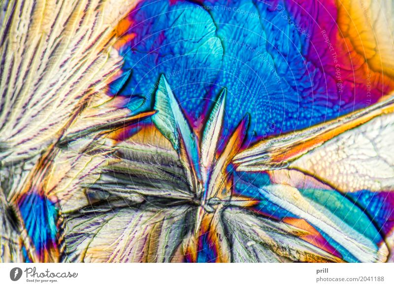 microscopic galactose crystals Science & Research Nature Exceptional d-galactose Sugar microcrystalline Crystal semitransparent transmitted Artificial Minerals