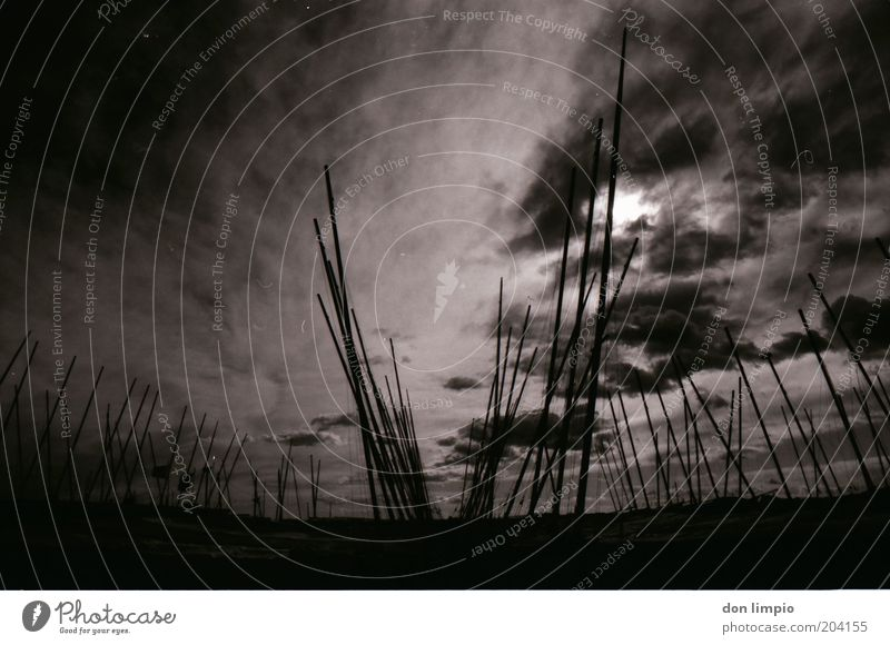 There will be darkness Far-off places Sun Harbour Environment Sky Clouds Weather Bad weather Storm Wind Sailing ship Watercraft Yacht harbour Cold Black White