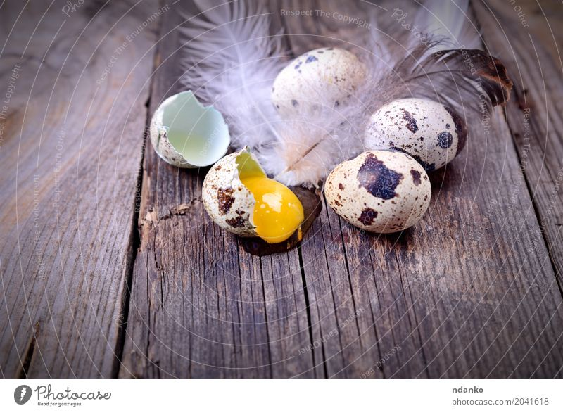 Quail eggs on a wooden surface Eating Natural Wood Small Gray Brown Above Fresh Table Easter Farm Breakfast Tradition Diet Consistency Rustic