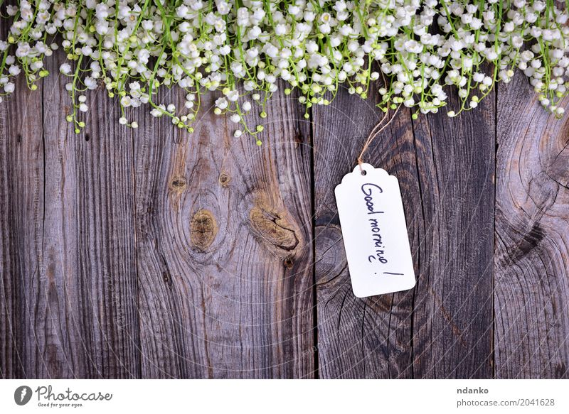 paper tag with the inscription good morning Beautiful Garden Plant Flower Paper Bouquet Wood Bright Small Gray White Beginning Lily of the valley blooming