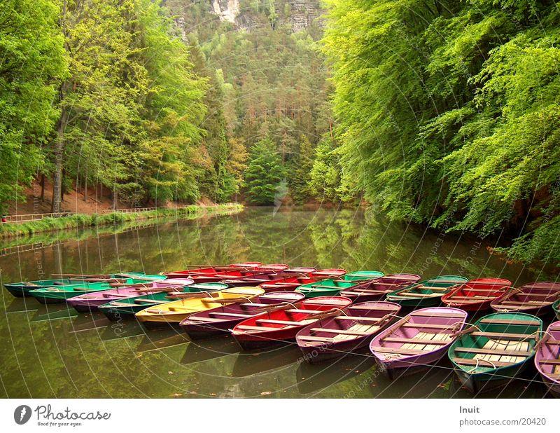 Colourful boats Calm Mountain lake Navigation blackbird lake Saxon Switzerland Water Reflection