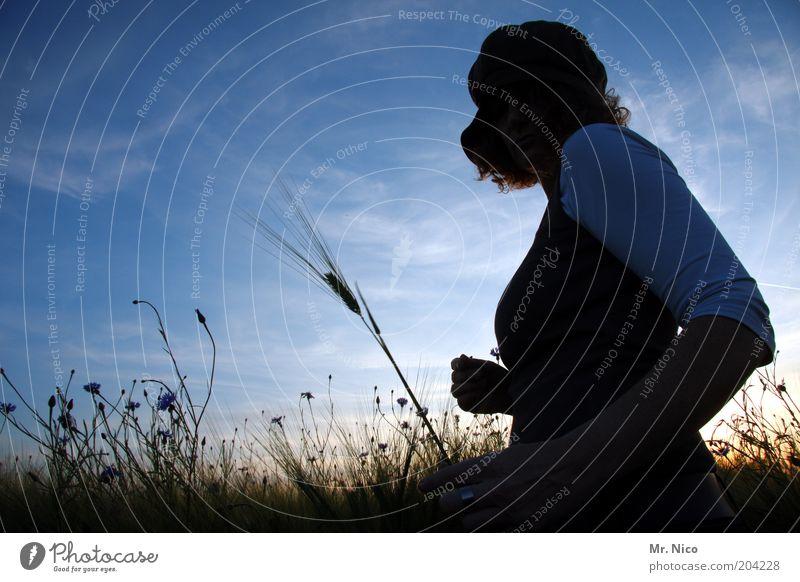 Woman Sky Nature Plant Summer Adults Environment Landscape Feminine Freedom Happy Dream Field Climate Romance Warm-heartedness