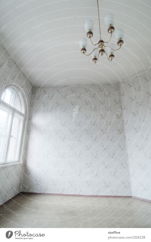 Window Room Empty Esthetic Floor covering Living or residing Lamp Wallpaper Old building Vacancy Building Chandelier