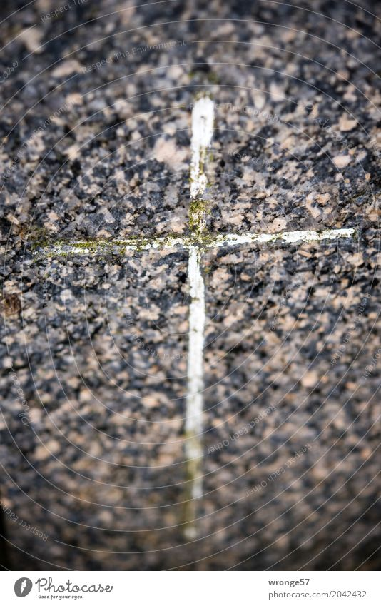 Risk is inevitable. Stone Sign Crucifix Old Dark Town Brown Gray Black White Goodness Christian cross Tombstone Memory Remember Christianity Forget Moss