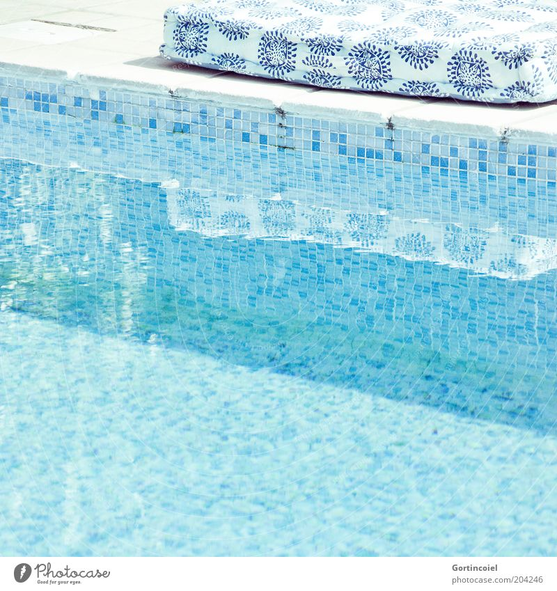 On the Poolside of Life Lifestyle Wellness Vacation & Travel Summer Summer vacation Bright Warmth Blue Beautiful weather Summery Cushion Water Swimming pool