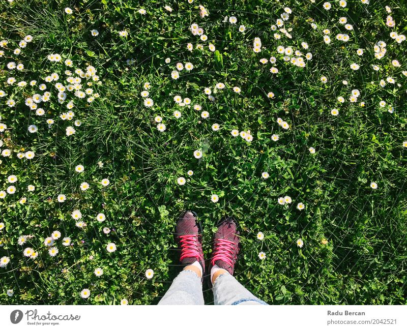 Woman Sport Shoes In Spring Grass With Daisies Human being Nature Vacation & Travel Youth (Young adults) Plant Blue Young woman Summer Colour Green Flower Leaf