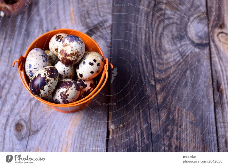 Fresh quail eggs in an orange bucket Eating Breakfast Diet Table Easter Group Nature Wood Bright Small Natural Above Gray Tradition Bucket eco Organic Farm