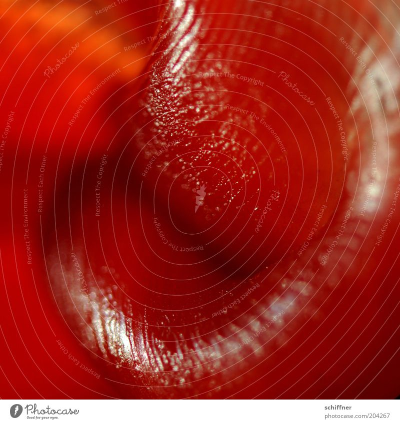 Red Glittering Candle Lips Muddled Furrow Desire Wax Human being Macro (Extreme close-up) Mouth