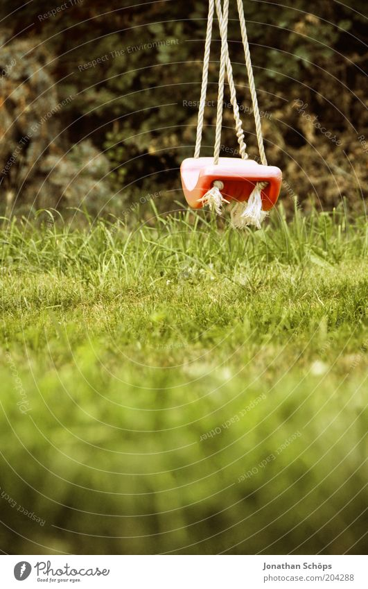 rum hanger Environment Nature Landscape Summer Green Red Esthetic Idyll Swing Rope Hang Empty Grass Meadow Garden Playground Toys Vanished Still Life Calm