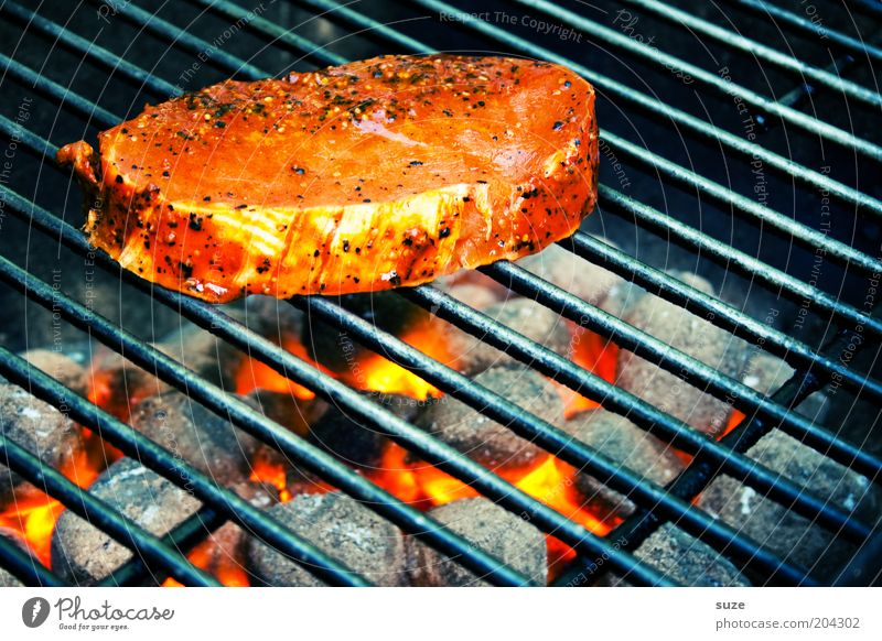 loin of pork Food Meat Nutrition Dinner Leisure and hobbies Barbecue (apparatus) Appetite Barbecue (event) Grill Steak Meat dishes Charcoal (cooking) BBQ season