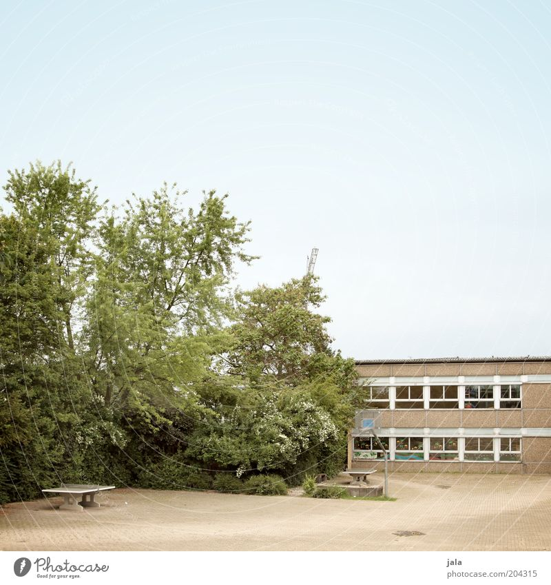 Sky Tree Window School Building Architecture School building Places Bushes Manmade structures Prefab construction Courtyard Basketball basket Schoolyard