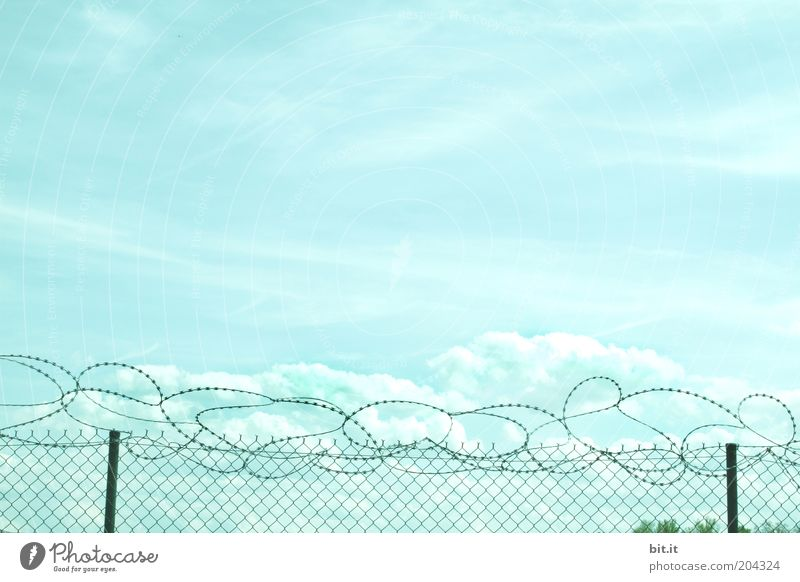 Blue Freedom Heaven Fear Environment Time Horizon Threat Border Fence Testing & Control War Captured Surrealism Wire Bans