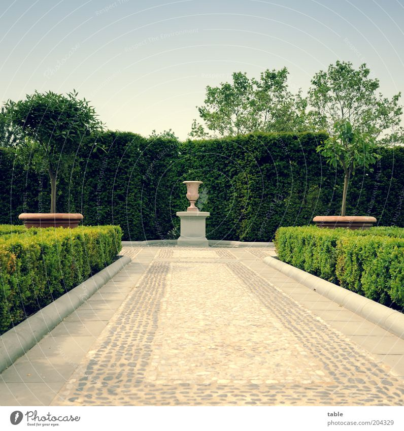 empty . . . Lifestyle Luxury Style Garden Plant Beautiful weather Tree Bushes Park Decoration Stone Esthetic Retro Blue Gray Green Emotions Romance Cleanliness