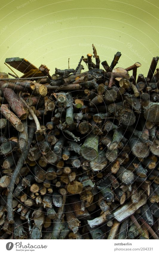 Wood Energy Branch Collection Stack Heat Supply Firewood Warm period
