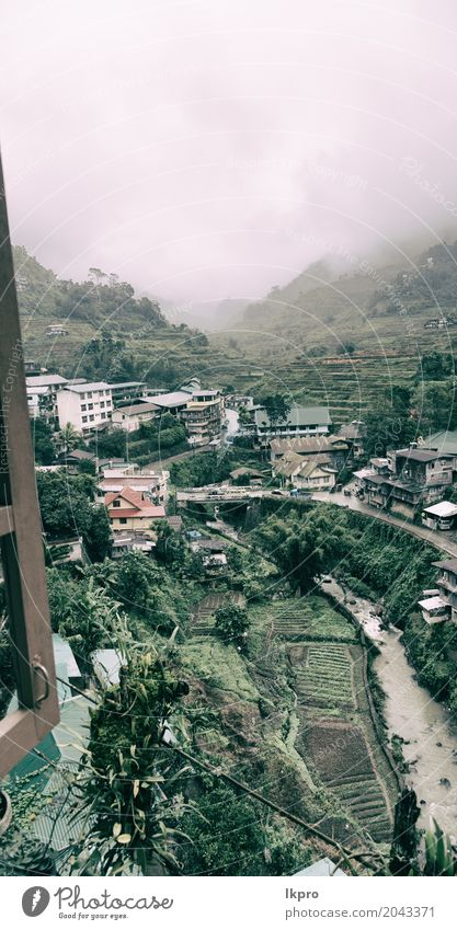 coultivation of rice from banaue unesco site Beautiful Vacation & Travel Mountain Hiking House (Residential Structure) Environment Nature Landscape Plant Earth